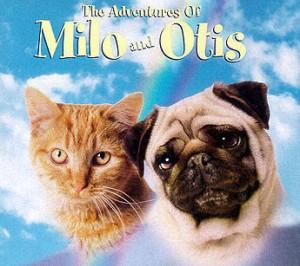 milo-and-otis2