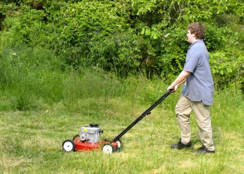 mowinggrass
