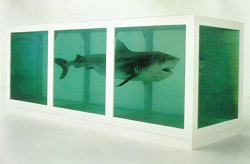Hirst-Shark