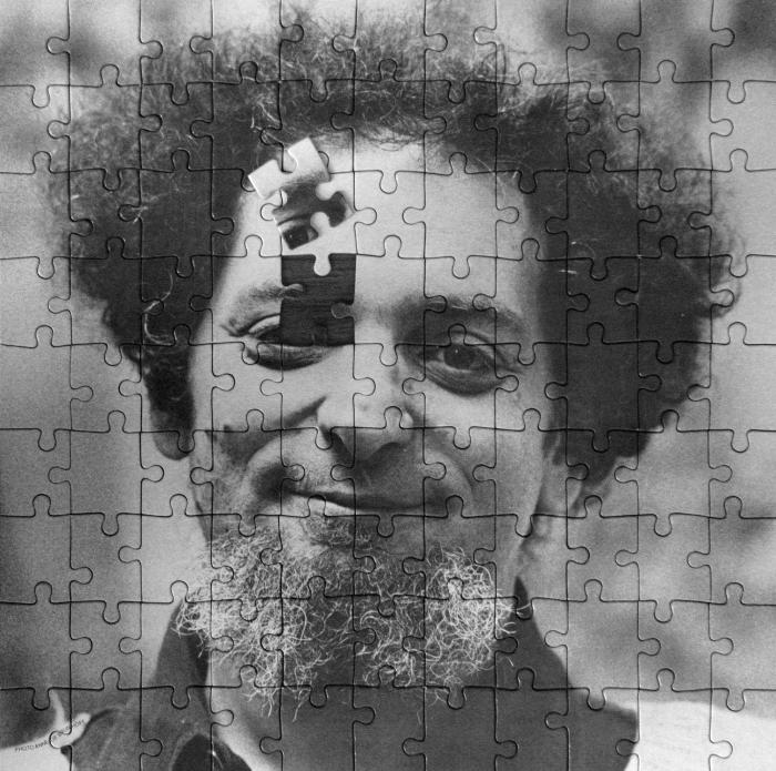 perec-puzzle-piece