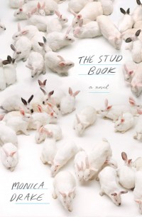 st0413-the-stud-book