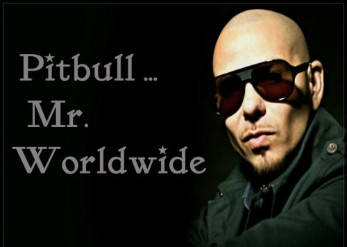 pitbull mr. worldwide