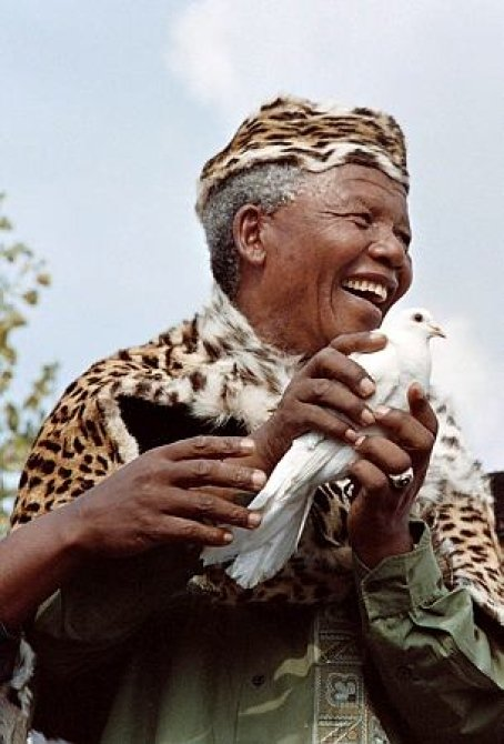 mandela with dove