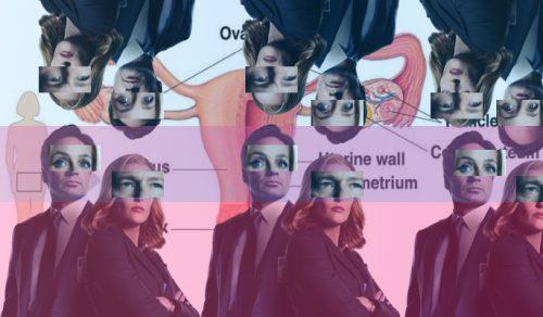 uterus-686x400
